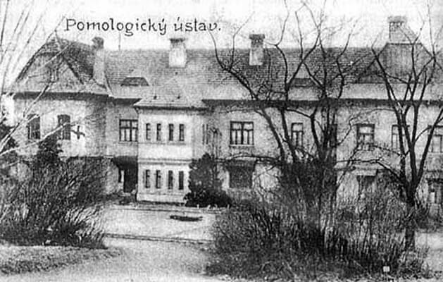 skola-brno-historie
